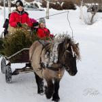 En lung tur runt området i en hästvagn kunde man med njuta av Foto: Pelle Nilsson / Ljungandalen.info