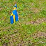 Nationaldagen 2015 Foto: Pelle Nilsson Ljungandalen.info
