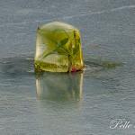 Hinder isbana med fina hinder Foto: Pelle Nilsson
